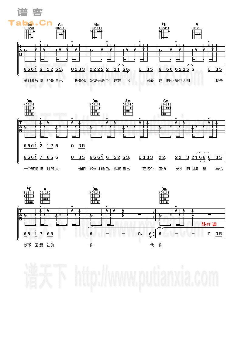 《被爱伤过的人 》吉他谱